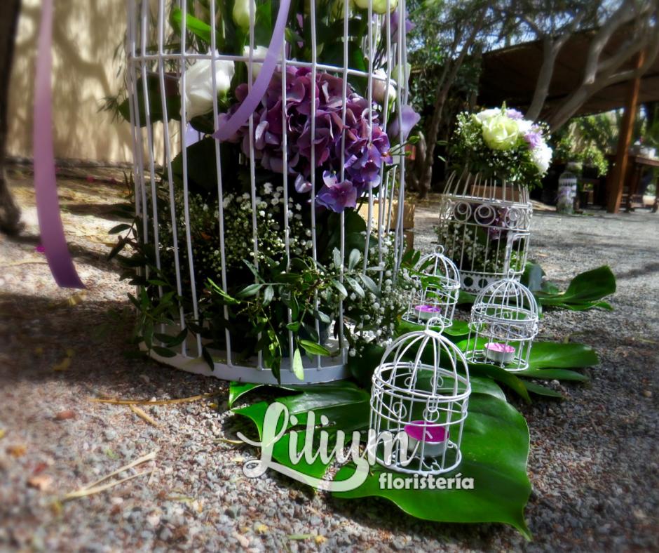 Lilium Floristería