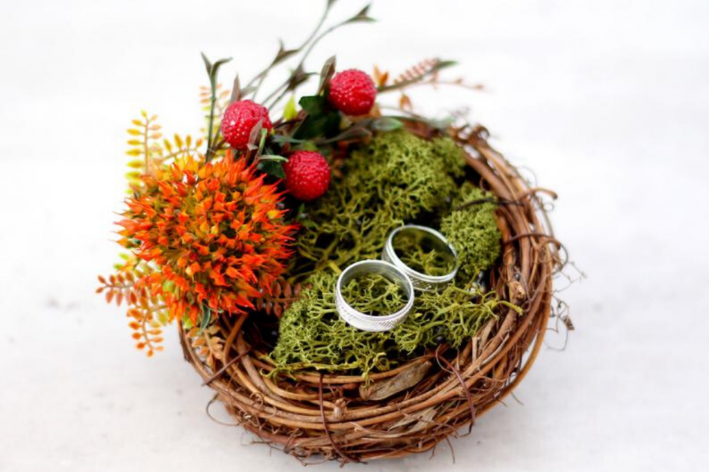 alianzas de boda en cojín nido de pájaro
